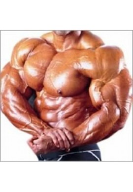 Steroid cycle for muscle gain - advanced